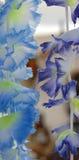 Leu 3 de fleur de tissu Photo libre de droits