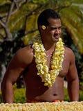 Leu hawaiani Fotografia Stock