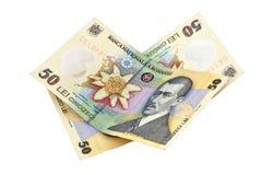 Leu roumains de factures d'argent Photographie stock libre de droits