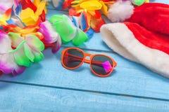 Leu, Sonnenbrille und Pantoffel Stockfoto