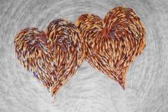 Leucaena seco de la forma del corazón Imagen de archivo libre de regalías