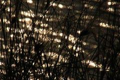 leuchte stockfotografie