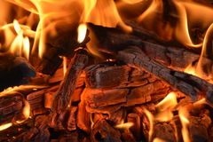 Leuchte meldet ein woodpile Grau an Lizenzfreies Stockfoto