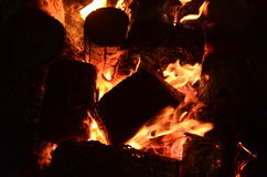Leuchte meldet ein woodpile Grau an Stockbilder