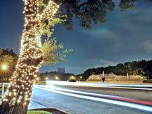 Leuchten Sie Baum stockfoto