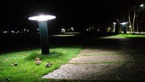 Leuchten Sie dem Weg Stockbild