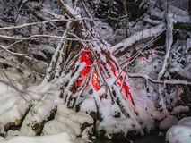 Leuchten Sie Park im Winter stockbild