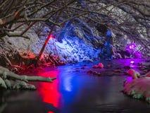 Leuchten Sie Park im Winter stockfotografie