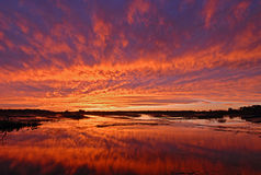 Leuchtender Sonnenuntergang über Feuchtgebiets-Sumpf lizenzfreies stockfoto