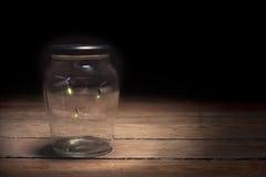 Leuchtkäfer in einem Glas Stockbild