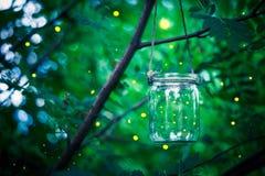 Leuchtkäfer in einem Glas Lizenzfreie Stockbilder