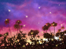 Leuchtkäfer-Tanz Lizenzfreies Stockbild