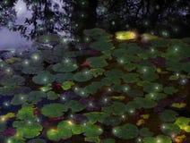 Leuchtkäfer und Lilienhülsen Stockfotos