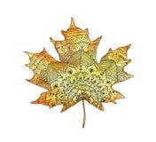 Leuchtorangeaquarell-Herbstahornblatt in zentangle Art Lizenzfreie Stockfotos