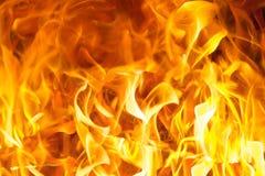 Leuchtorangeflammenhintergrund Stockfoto