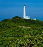 Leuchtturm auf grünem Hügel stockfoto