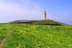 Leuchtturm in dem Abstand auf einem grünen Gebiet Stockbilder