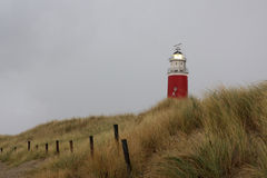 Leuchtturm in den Dünen auf Texel Stockfotografie