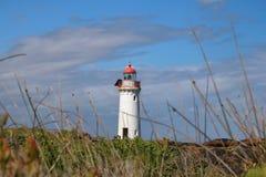 Leuchtturm-Hafen-Fee lizenzfreies stockbild