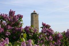Leuchtturm mit Blumen lizenzfreies stockfoto