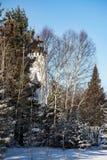 Leuchtturm und Bäume Stockfotografie