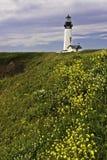 Leuchtturm und Blumen Stockbild