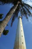 Leuchtturm-und Kokosnuss-Baum lizenzfreie stockfotografie