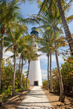 Leuchtturm- und Palmen Stockfotos