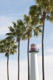 Leuchtturm und Palmen Stockbilder
