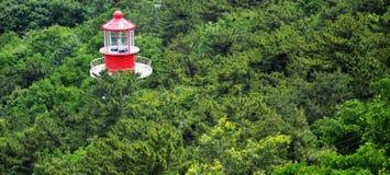 Leuchtturm und Wald Lizenzfreie Stockfotografie