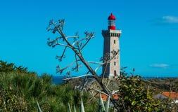 Leuchtturm von Collioure Frankreich Stockbilder