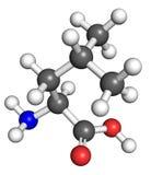 Leucine molecule Stock Photos