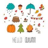Leuk Autumn Floral Forest Design Elements Stock Foto