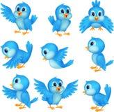 Leuk blauw vogelbeeldverhaal Stock Foto's