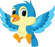 Leuk blauw vogelbeeldverhaal Stock Foto