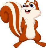 Leuk eekhoornbeeldverhaal Stock Afbeelding