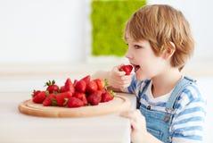 Leuk gelukkig jong geitje die smakelijke rijpe aardbeien op de keuken eten stock afbeelding