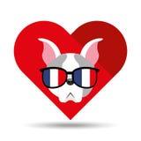 Leuk hondhuisdier met de achtergrond van het de glazenhart van vlagfrankrijk Royalty-vrije Stock Afbeelding