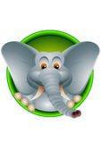 Leuk hoofd van olifantsbeeldverhaal Stock Foto