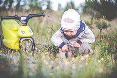 Leuk jong geitje in een weide stock fotografie