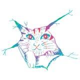 Leuk kat peering Schetsmatige stijlillustratie Stock Illustratie