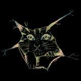 Leuk kat peering Schetsmatige stijlillustratie Vector Illustratie