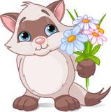 Leuk katje met bloemen Royalty-vrije Stock Afbeeldingen