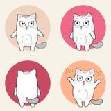 Leuk kattenkarakter Stock Fotografie