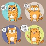 Leuk kattenkarakter Royalty-vrije Stock Afbeeldingen