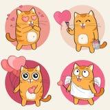 Leuk kattenkarakter Stock Foto