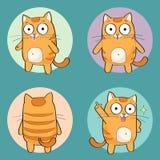 Leuk kattenkarakter Royalty-vrije Stock Foto's