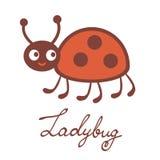 Leuk kleurrijk lieveheersbeestjekarakter Royalty-vrije Stock Fotografie