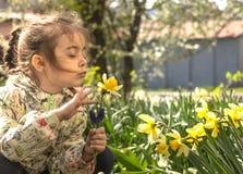Leuk meisje in de tuin met gekleurde gele narcissen stock afbeeldingen