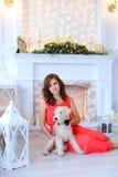 Leuk meisje die, zittend op vloer en hond op achtergrond van spar glimlachen royalty-vrije stock afbeeldingen